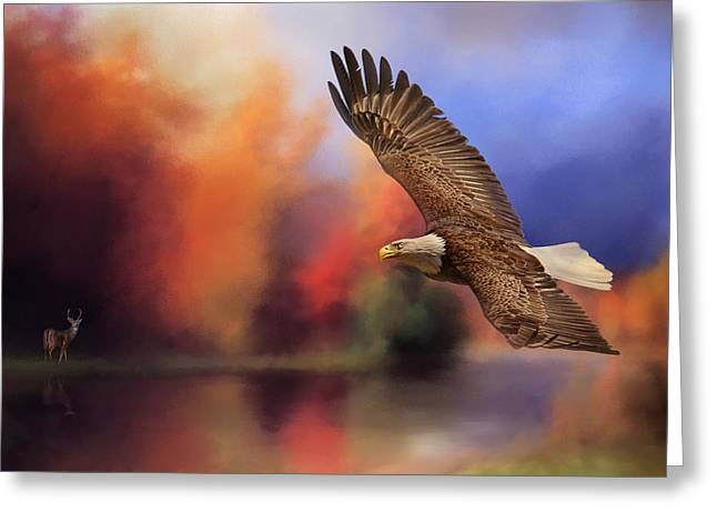 Eagles In Flight Greeting Cards - Fall Flight - Bald Eagle Greeting Card by Jai Johnson
