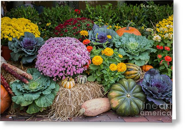 Commercial Photography Greeting Cards - Fall Flower and Pumpkin Display Greeting Card by Iris Richardson