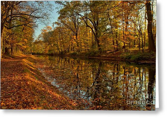 Jogging Greeting Cards - Fall Foliage Along The Delaware Canal Greeting Card by Adam Jewell