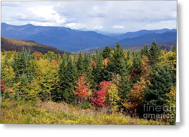 Newengland Greeting Cards - Fall Foliage Greeting Card by Kerri Mortenson