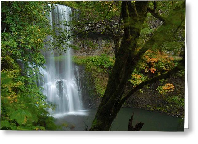 Fall Foliage, Lower South Falls, Silver Greeting Card by Timothy Herpel
