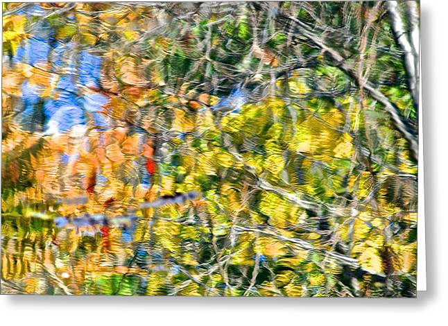 Picaso Greeting Cards - Fall Foliage Greeting Card by Frozen in Time Fine Art Photography