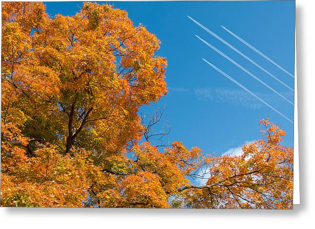 Plane Trees Greeting Cards - Fall Foliage with Jet Planes Greeting Card by Tom Mc Nemar