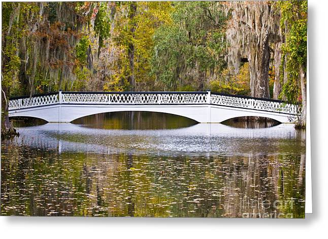 Al Powell Photog Greeting Cards - Fall Footbridge Greeting Card by Al Powell Photography USA