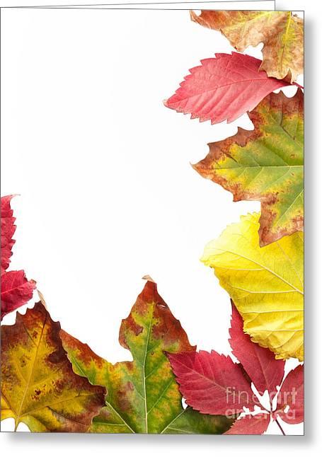 October Framed Greeting Cards - Fall frame Greeting Card by Sinisa Botas