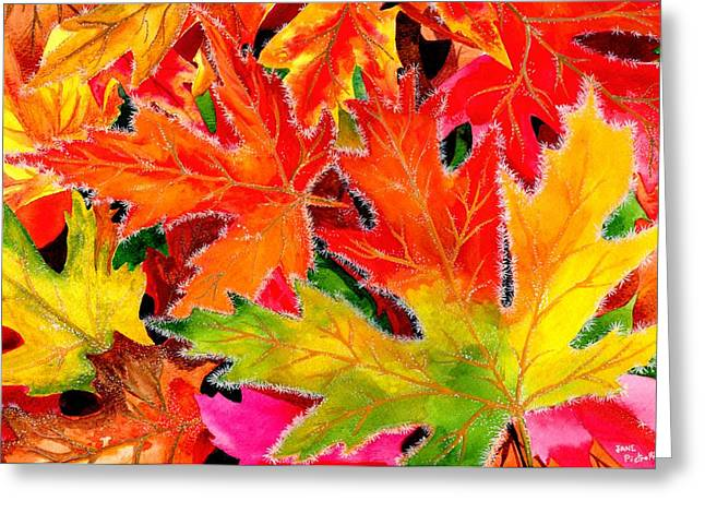 Forest Floor Drawings Greeting Cards - Fall frost Greeting Card by Jane Pietrofitta