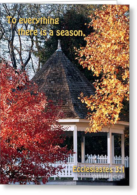 White Pickett Fences Greeting Cards - Fall Gazebo Greeting Card by John Hoffman