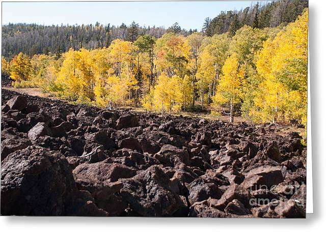 Geobob Greeting Cards - Fall Glory and Fiery Past Navajo Lake Utah Greeting Card by Robert Ford