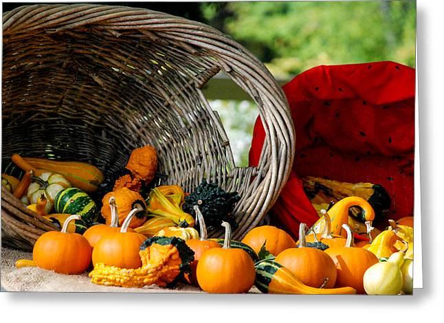 Geobob Greeting Cards - Fall Harvest Halloween Cornucopia Durham Connecticut Greeting Card by Robert Ford
