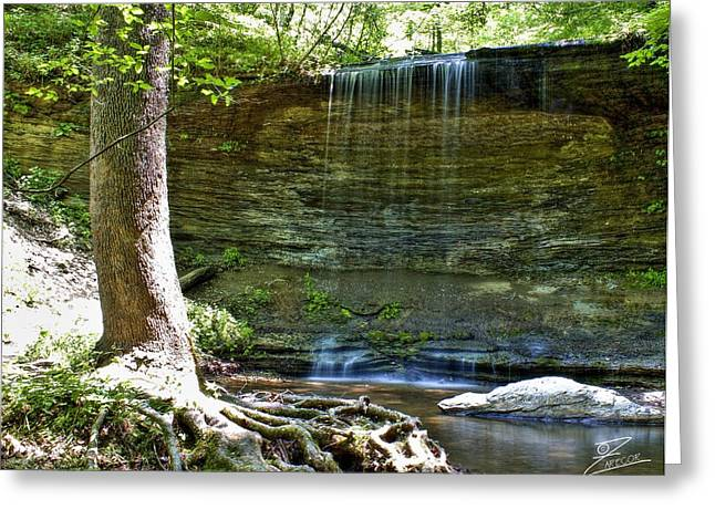 Natchez Trace Parkway Greeting Cards - Fall Hollow Falls Greeting Card by David Zarecor