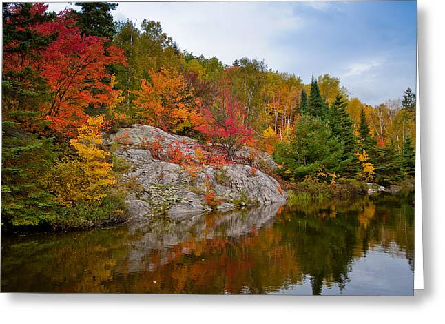 Agnew Greeting Cards - Fall In Canada Greeting Card by Donnie Bobb