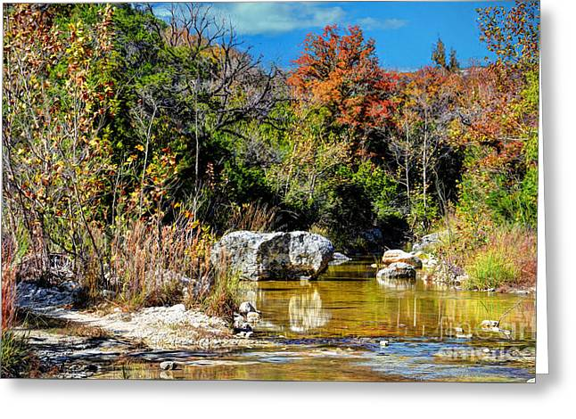 Reflections Of Trees In River Digital Greeting Cards - Fall in Central Texas Greeting Card by Savannah Gibbs