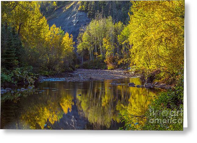 Canoe Greeting Cards - Autumn Reflections In Fort McMurray Greeting Card by Alanna DPhoto