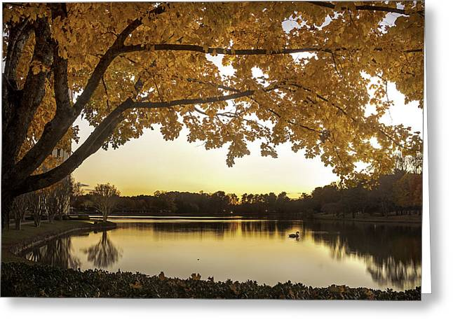 Furman Greeting Cards - Fall in Greenville Greeting Card by Nian Chen