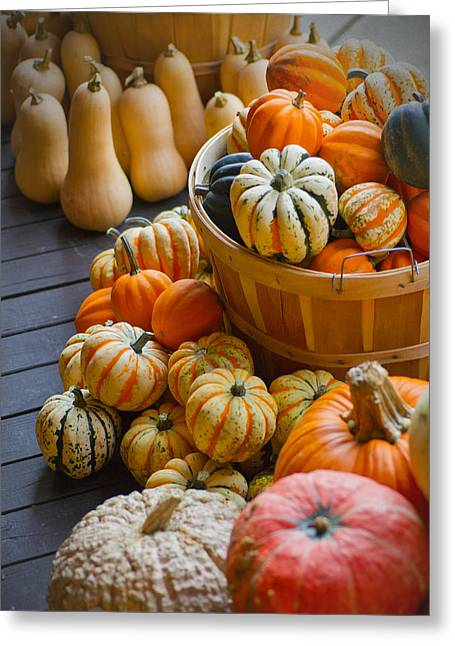 Wire Handle Greeting Cards - Fall in - Indiana Harvest Basket Greeting Card by Michael Flood