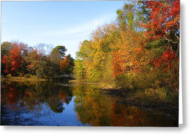 Fallscape Greeting Cards - Fall in Lakewood II Greeting Card by Roger Becker