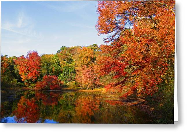 Fallscape Greeting Cards - Fall in Lakewood III Greeting Card by Roger Becker