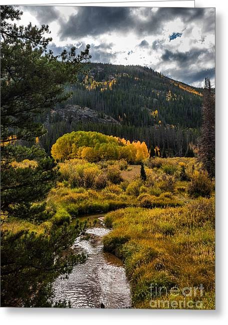 Fall Scenes Greeting Cards - Fall in Laramie River Greeting Card by Kendall Reed