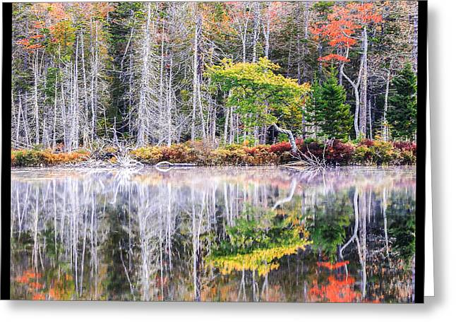 Gold Leave Greeting Cards - Fall in Love with Eagle Lake  Greeting Card by Laurie Martin