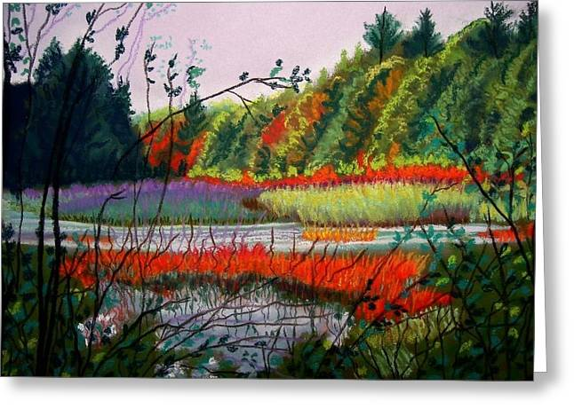 Wetlands Pastels Greeting Cards - fall in NH Greeting Card by Ruth  Sears