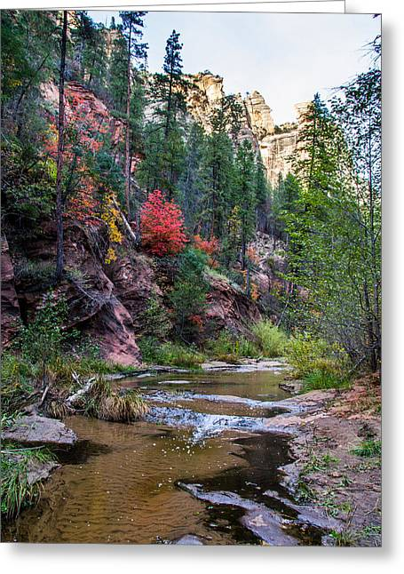 West Fork Greeting Cards - Fall in Oak Creek Canyon Greeting Card by Cory Mottice