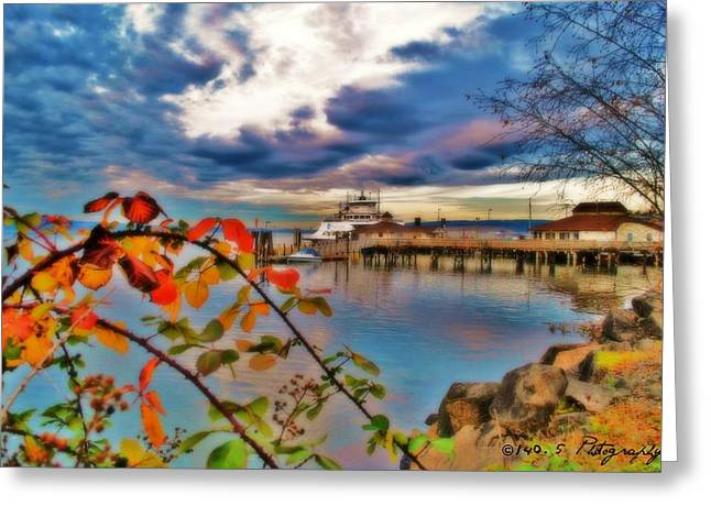 Steilacoom Greeting Cards - Fall in Steilacoom Greeting Card by Tammy Caruthers