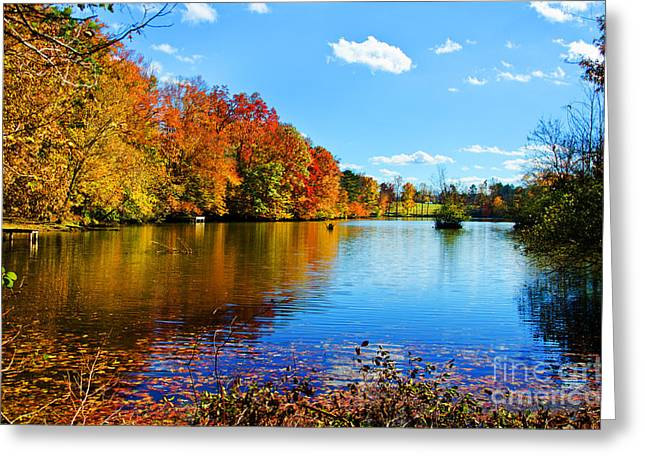 Autumn Leaf On Water Greeting Cards - Fall In The Cove Greeting Card by Paul Mashburn