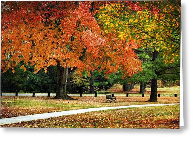 Indiana Autumn Greeting Cards - Fall In The Park Greeting Card by Christina Rollo