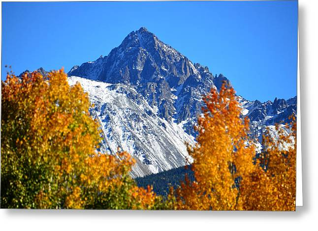 Aspens In Fall Greeting Cards - Fall in the Rockies Greeting Card by David Lee Thompson