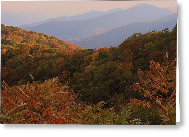 Autumn In The Country Greeting Cards - Fall In The Smokies Greeting Card by Dan Sproul