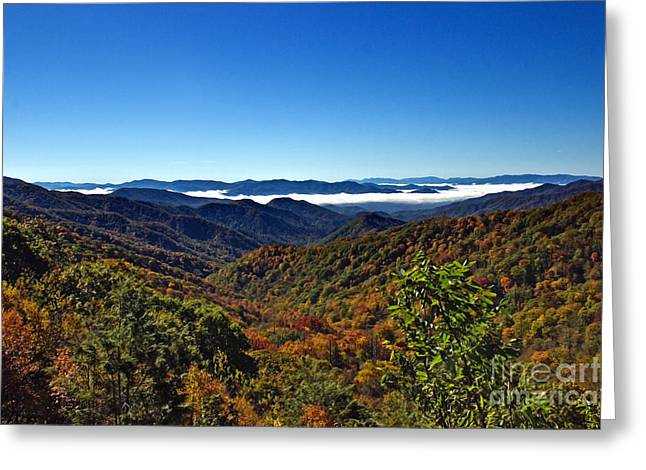 Gatlinburg Tennessee Greeting Cards - Fall In The Smoky Mountains Greeting Card by Tom Gari Gallery-Three-Photography
