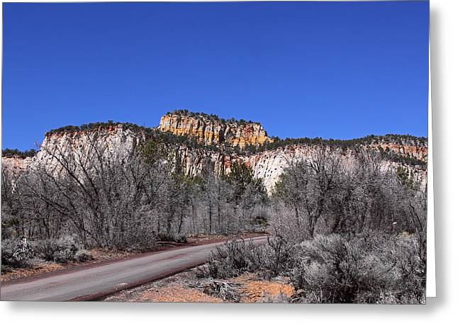Crazy Quilt Greeting Cards - Fall In Zion National Park Greeting Card by Viktor Savchenko