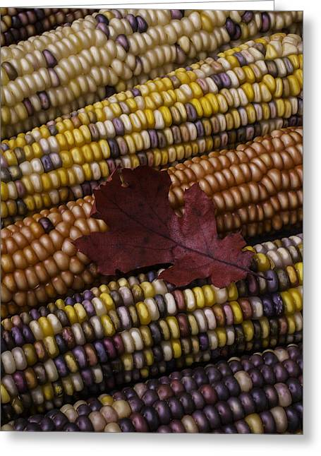 Red Leaves Photographs Greeting Cards - Fall Indian Corn With Leaf Greeting Card by Garry Gay