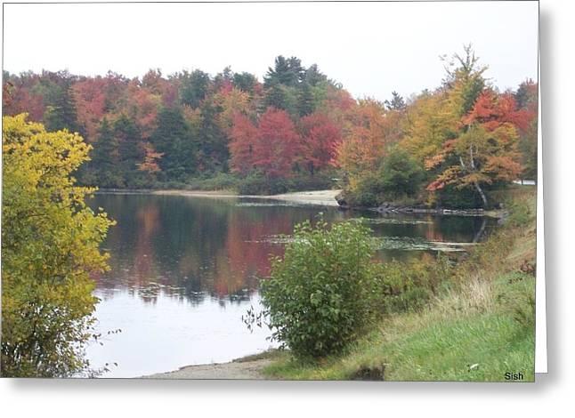 Fallscape Greeting Cards - Fall Lake Colors Greeting Card by Sandra J Isherwood