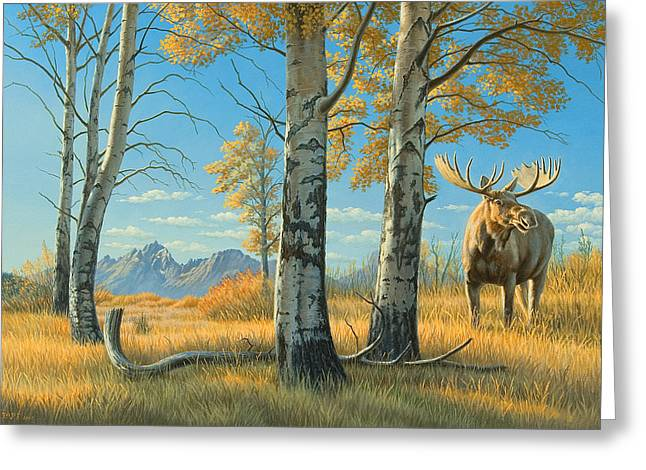 Grand Teton Greeting Cards - Fall Landscape - Moose Greeting Card by Paul Krapf
