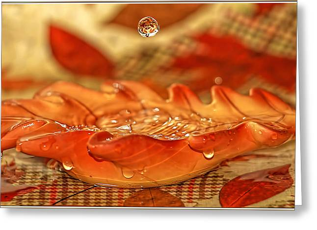Commercial Photography Greeting Cards - Fall Leaf Water Drop Greeting Card by Geraldine Scull