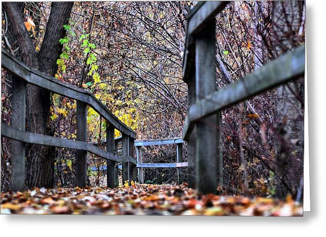 Nature Greeting Cards - Fall Leaves on Boardwalk Greeting Card by Don Mann