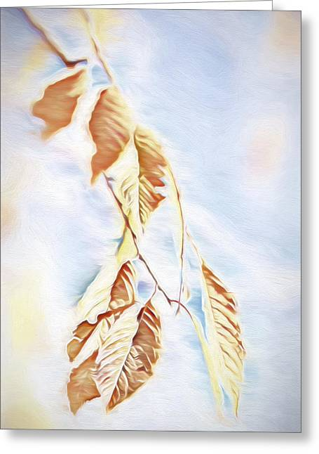 Bare Trees Mixed Media Greeting Cards - Fall Leaves Study 3 - Fall Paint 1 Greeting Card by Steve Ohlsen