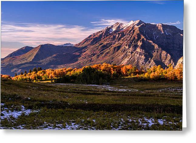 Autumn Landscape Photographs Greeting Cards - Fall Meadow Greeting Card by Chad Dutson