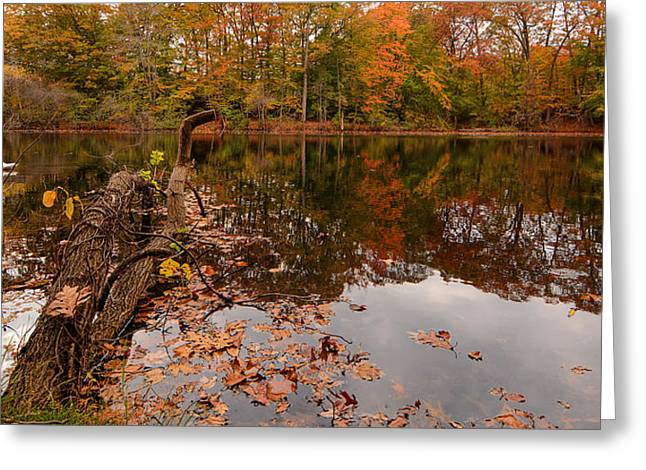 Autumn Art Greeting Cards - Fall Memories Greeting Card by Lourry Legarde