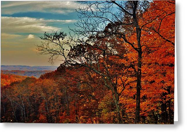 Boonies Greeting Cards - Fall Horizon Greeting Card by Michelle McPhillips