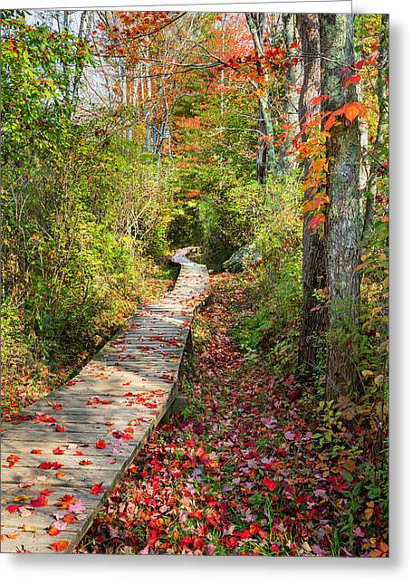 Nature Center Greeting Cards - Fall Morning Greeting Card by Bill  Wakeley