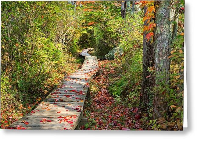 Fall Morning Greeting Card by Bill  Wakeley
