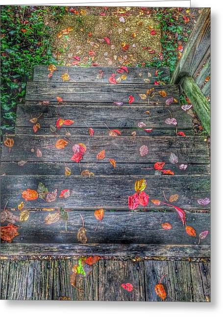 Fall Morning Greeting Card by Marianna Mills