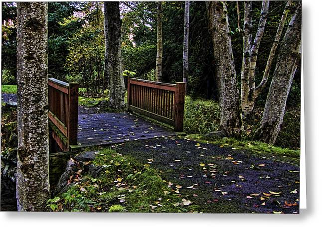 Ron Roberts Photography Photographs Greeting Cards - Fall Morning Greeting Card by Ron Roberts