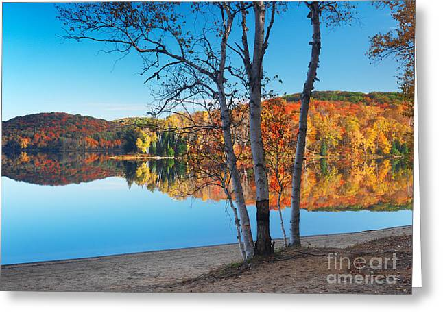 Fall Nature Scenery At Arrowhead Lake Greeting Card by Oleksiy Maksymenko