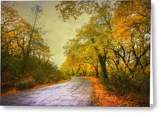 Photos Of Autumn Digital Greeting Cards - Fall of the Leaf Greeting Card by Kandy Hurley