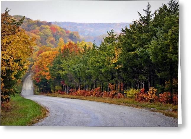 Fall On Fox Hollow Road Greeting Card by Cricket Hackmann