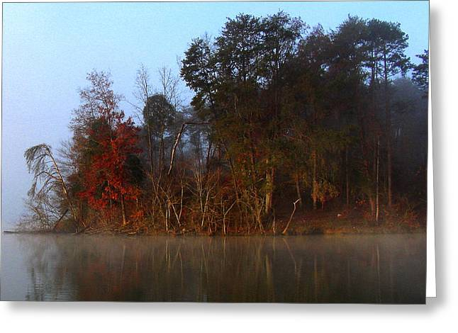 Fall On Melton Hill Lake Iv Greeting Card by Douglas Stucky