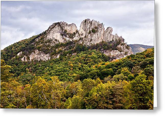 Seneca Greeting Cards - Fall on Seneca Rocks West Virginia Greeting Card by Dan Carmichael